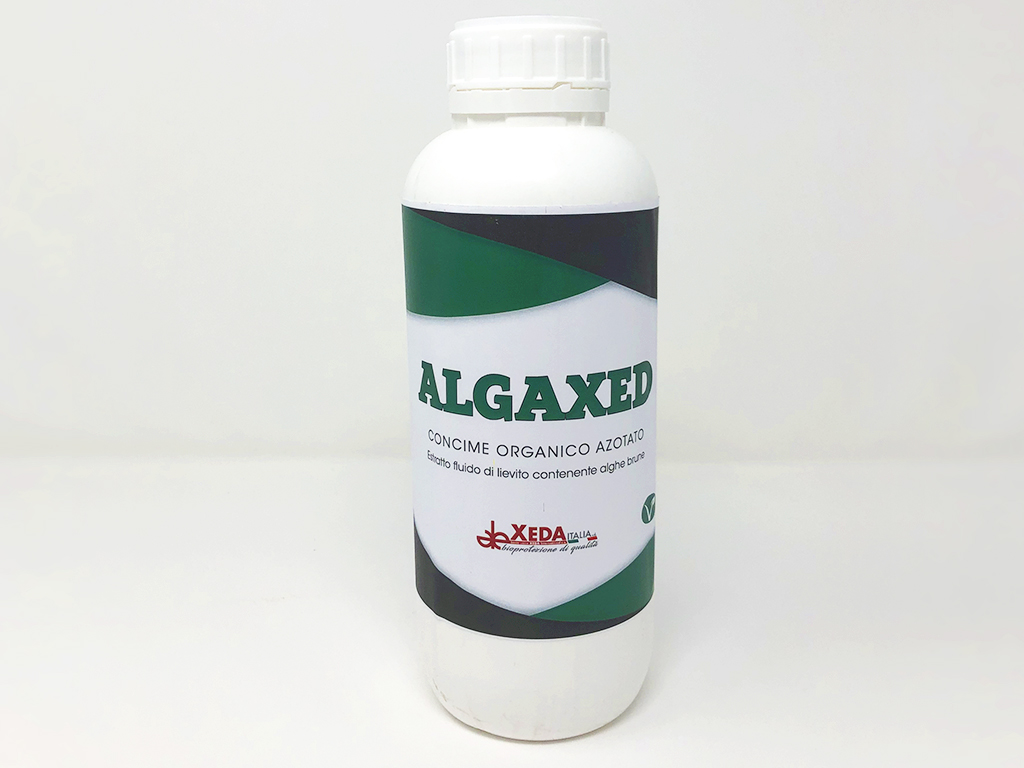 ALGAXED